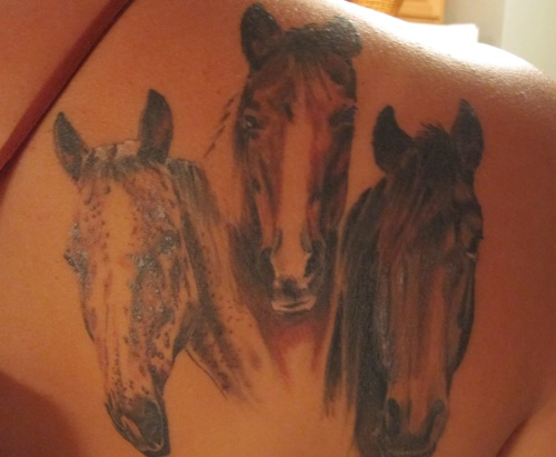 Wild horse pictures to pin on pinterest tattooskid for Wild horse tattoo