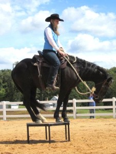 Emily and her mustang, Gus, compete in Extreme Mustang Makeover