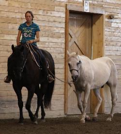 amy pony
