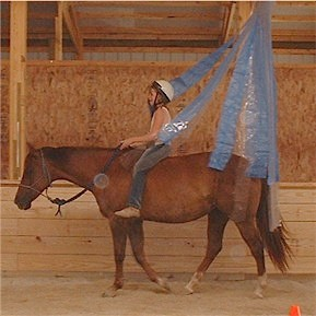 Here's a generic example of riding a horse through a tarp