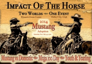 Impact of the horse 1-2 flyer 2014trial