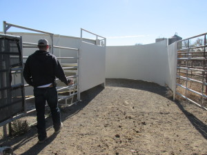 Heath Weber shows us the Temple Grandin-inspired chute for processing and treating horses