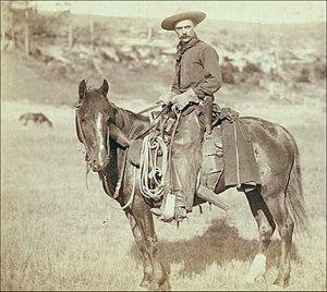 cowboy1a