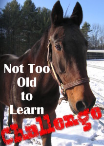 not too old to learn challenge