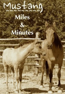 mustang miles