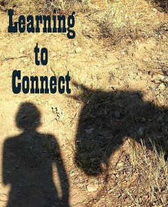 learning to connect