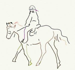 0001_horse_w