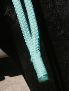 No metal tip. Hooray! Well-spliced rope end of halter