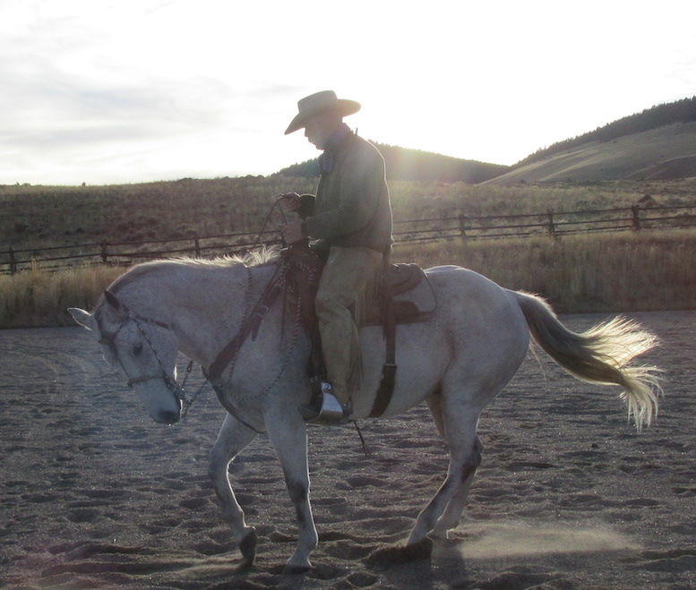 Randy Rieman photographed on his bridle horse in Dillon, Montana
