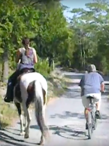 Many don't understand the need to yield to horse and rider
