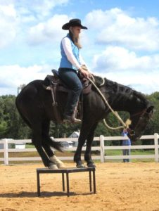 Emily Luciano performs at Extreme Mustang Makeover with Gus