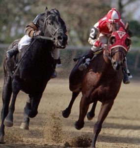 Fictional Seabiscuit and War Admiral in the famous match race.