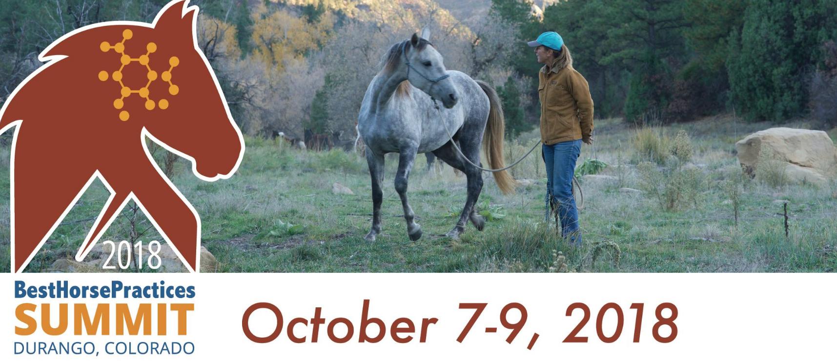 Best Horse Practices Summit